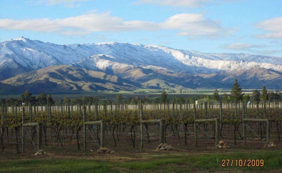 Central Otago District, Otago, South Island, New Zealand