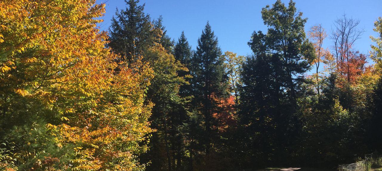 Newry, Maine, États-Unis d'Amérique