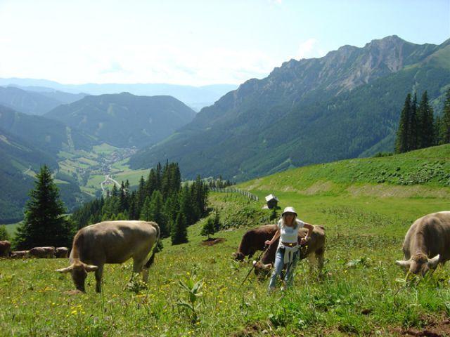 Kammern im Liesingtal, Styria, Austria
