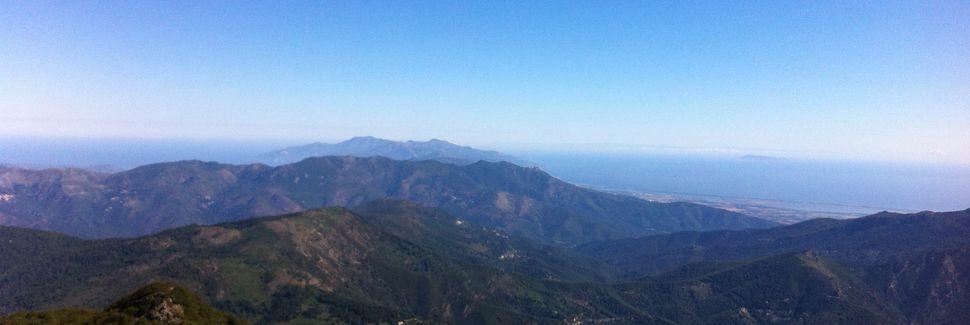 Borgo, Korsika, Frankreich