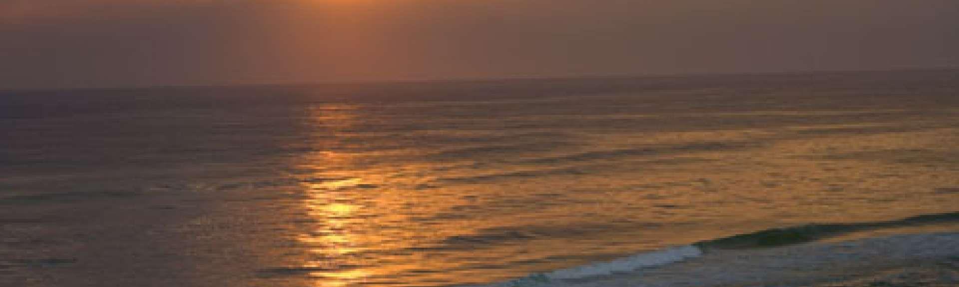 Mariner East, Panama City Beach, FL, USA