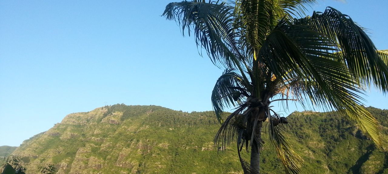 La Providence, Réunion