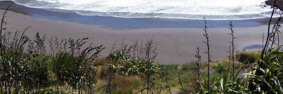 Vignoble de Sentry, Lepperton, Taranaki, Nouvelle-Zélande