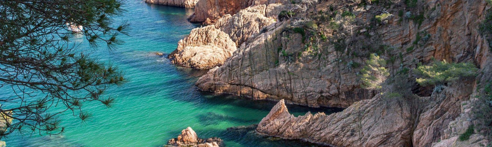 Selva, Espagne