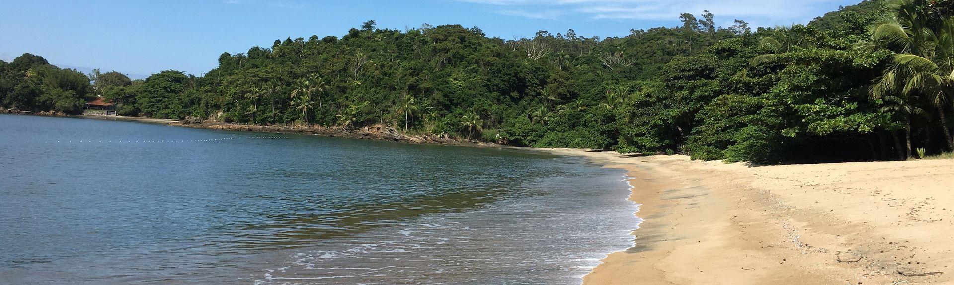 Plage de Pitangueiras, São Sebastião, Région Sud-Est, Brésil