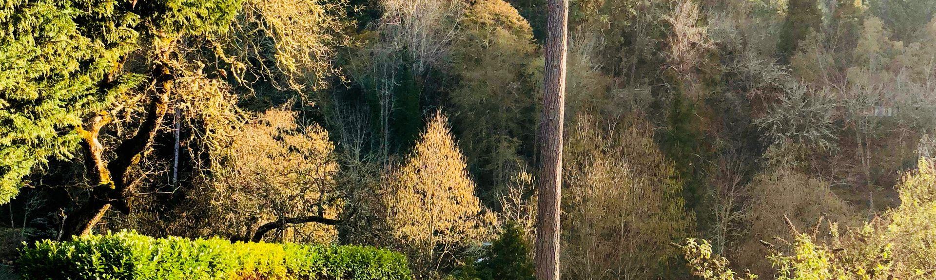 Redwood, OR, USA