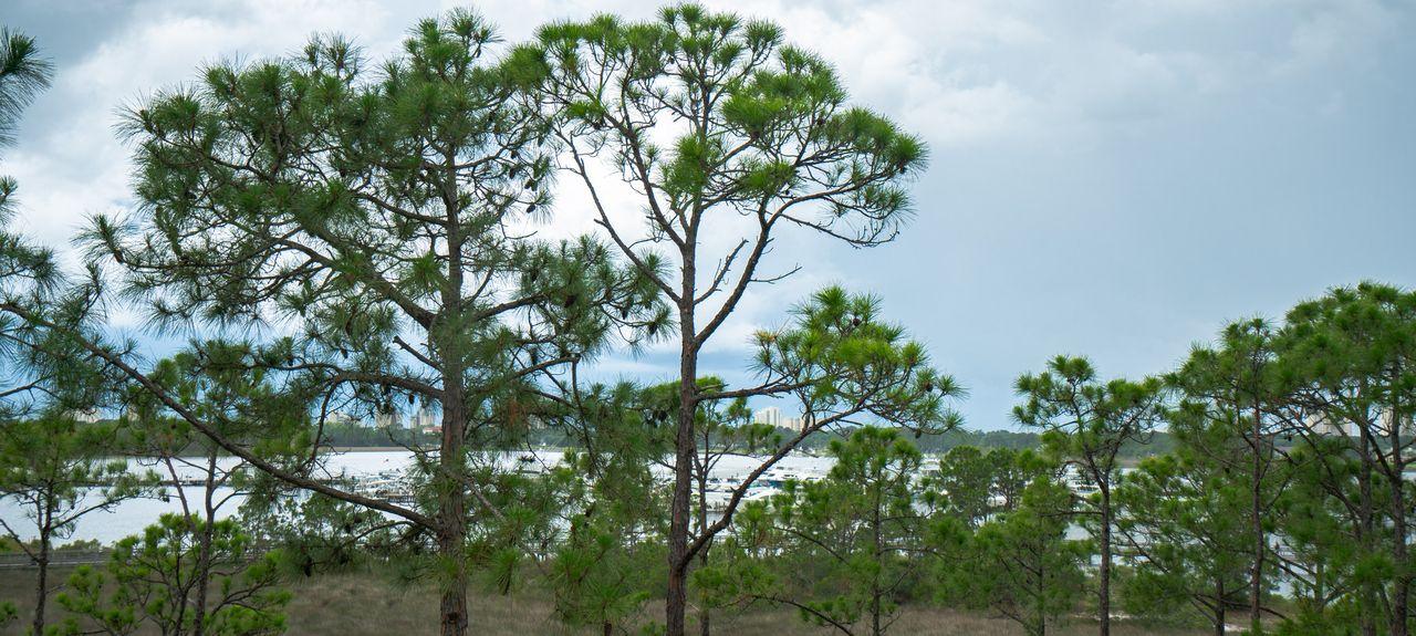 Villa Lago, Miramar Beach, Floride, États-Unis d'Amérique