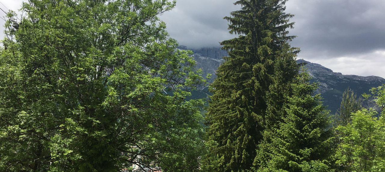 Province of Belluno, Italy