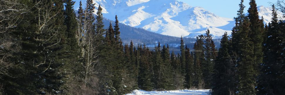 Healy, Alaska, États-Unis d'Amérique
