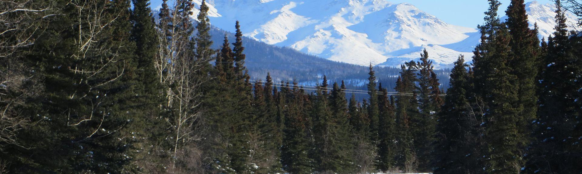 Wilderness Access Center, Denali National Park, Alaska, United States of America