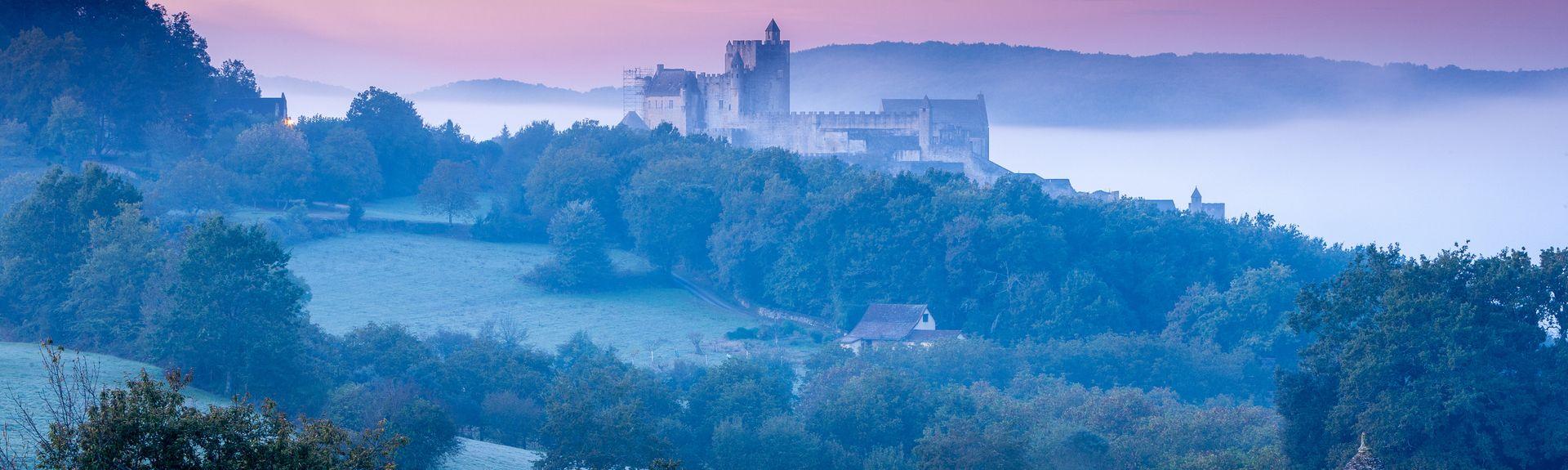 Périgord Negro, Francia