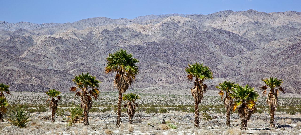 Indio, Kalifornien, Vereinigte Staaten