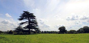 South Gloucestershire, UK