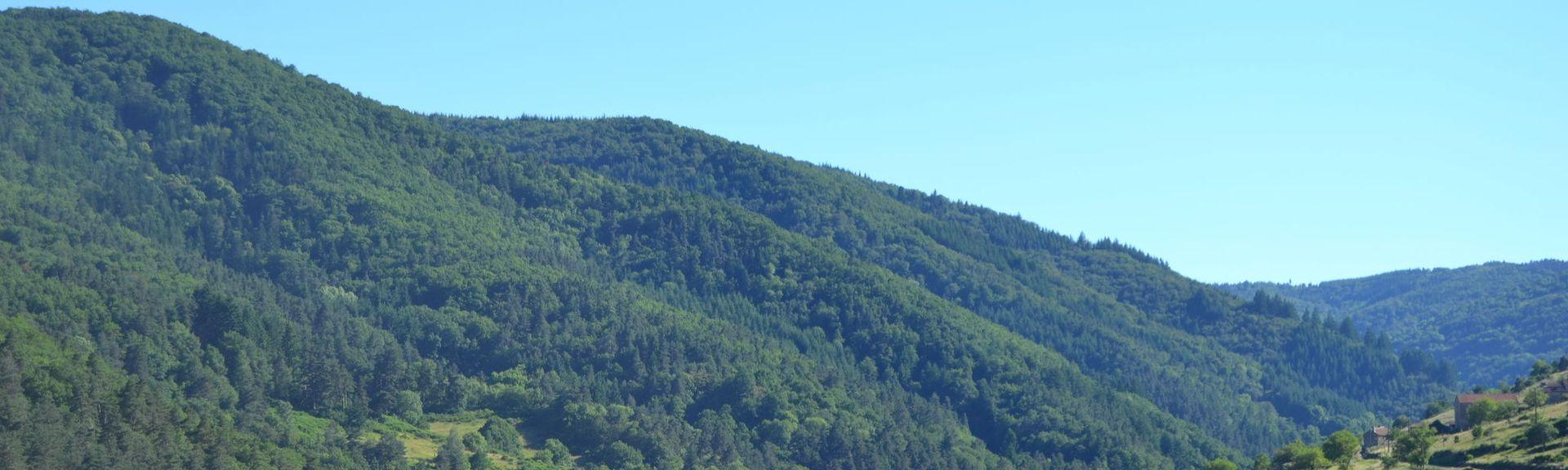 Langeac, Auvergne-Rhône-Alpes, Francja