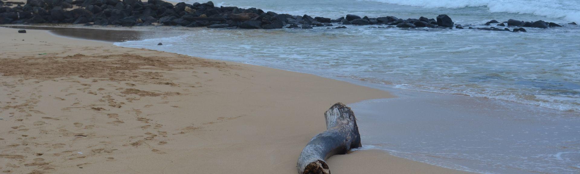 Kauai Beach Resort (Hanamaulu, Hawaii, Stati Uniti d'America)