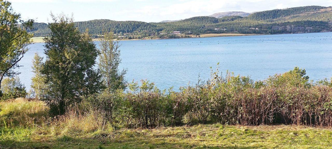 Sor-Trondelag, Norway