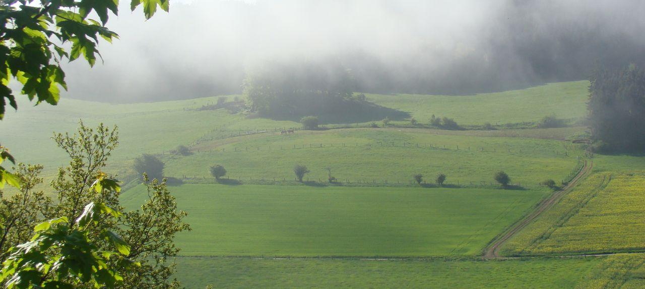 Heringhausen, Diemelsee, Hesse, Allemagne