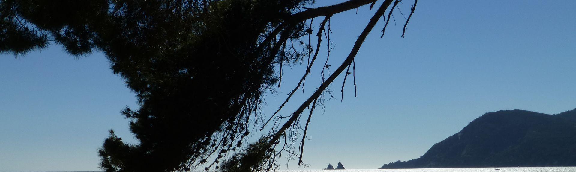 Les Sablettes, La Seyne-sur-Mer, Provenza-Alpi-Costa Azzurra, Francia