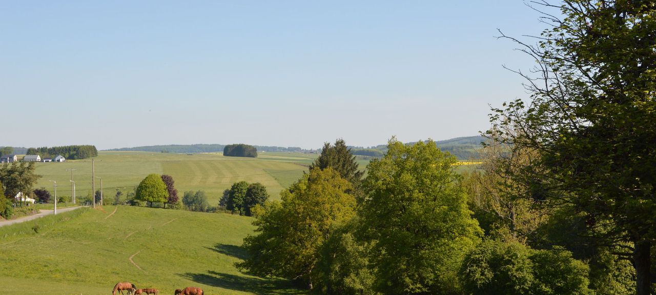 Ham-sur-Heure-Nalinnes, Walloon Region, BE