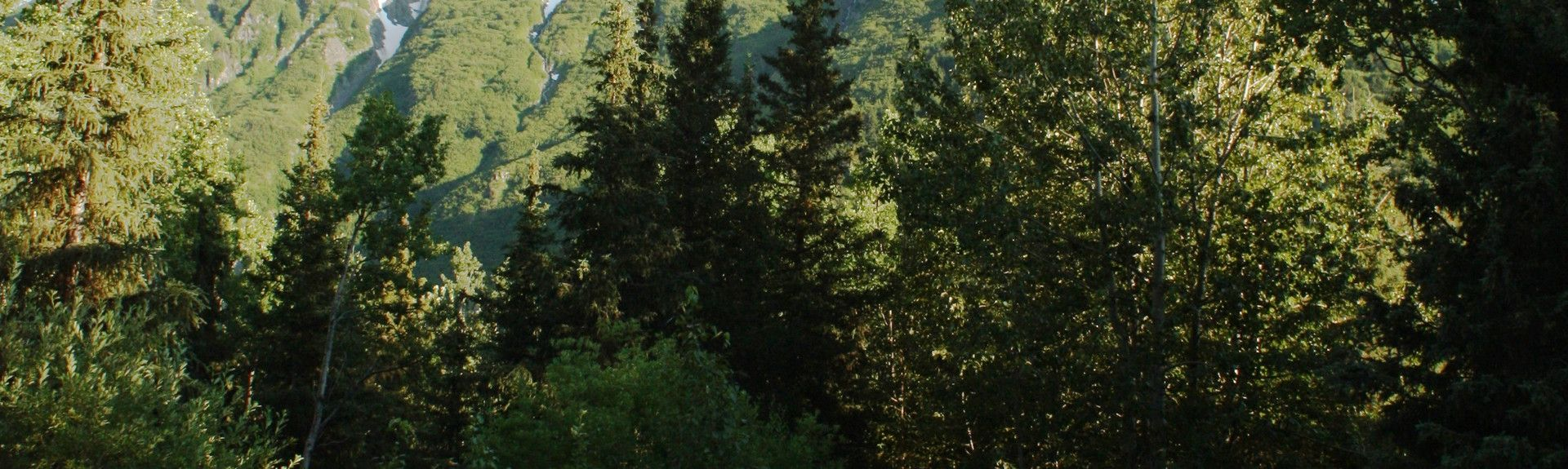 Moose Pass, AK, USA