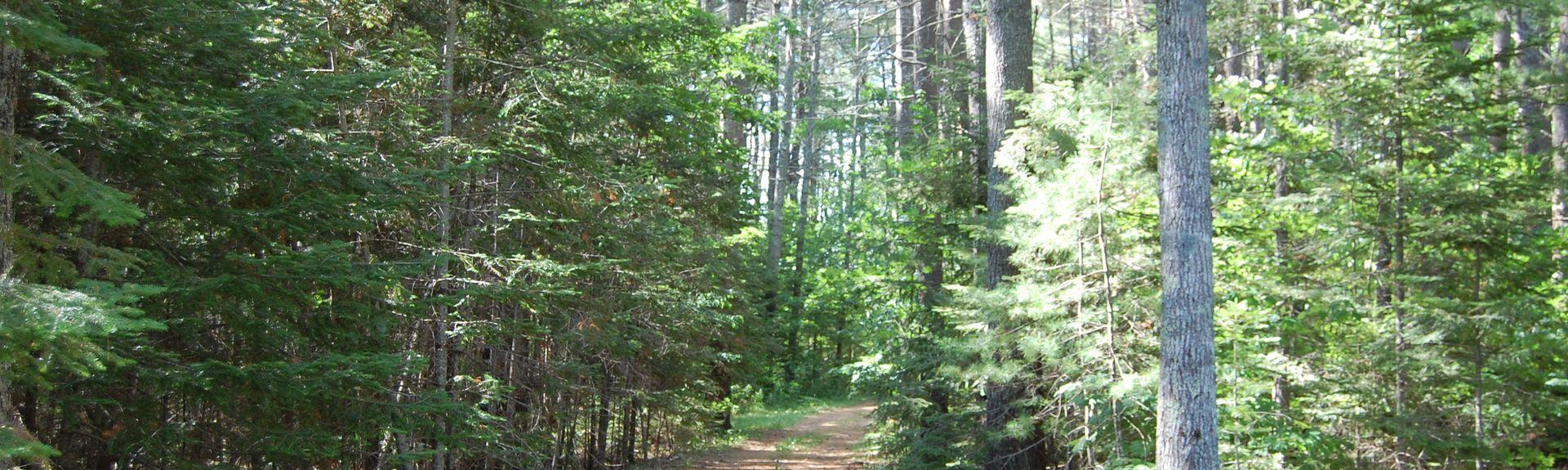 Brooks, Maine, Stati Uniti d'America