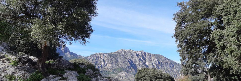 Montecorto, Andalousie, Espagne