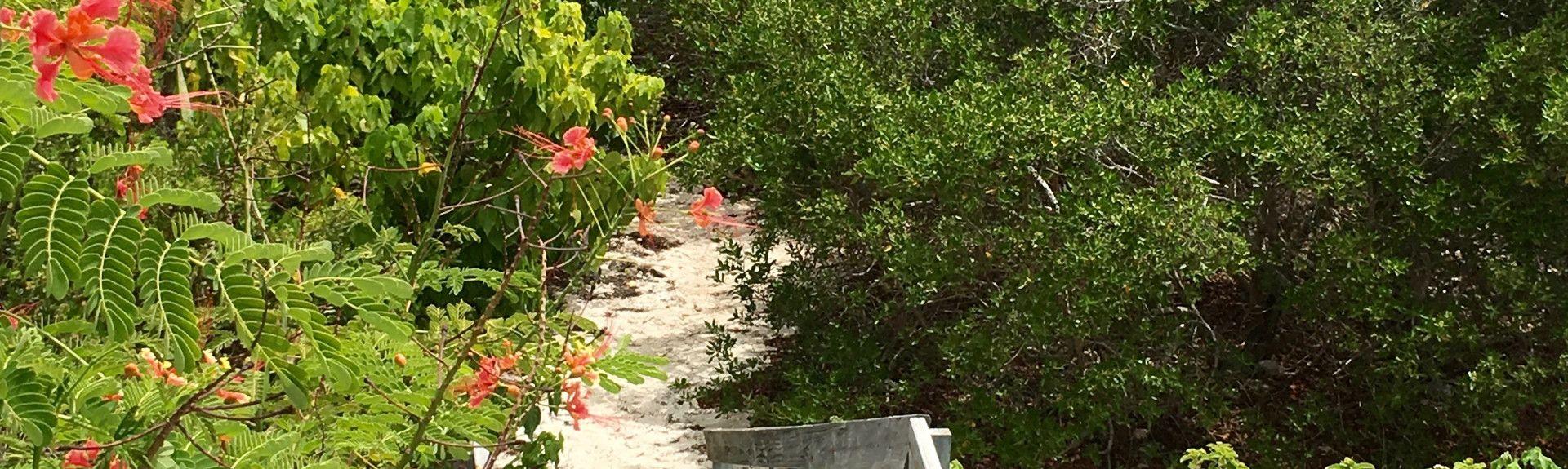 Sabadeco, Kralendijk, Caribbean Netherlands
