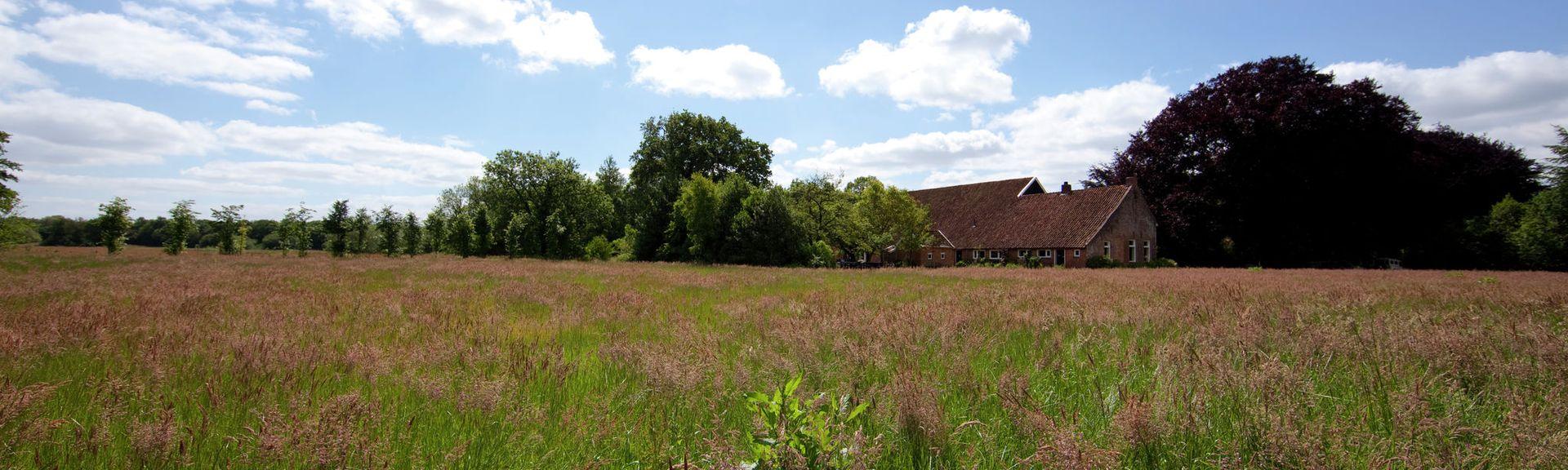 Hunebedcentrum, Borger, Drenthe, Nederland
