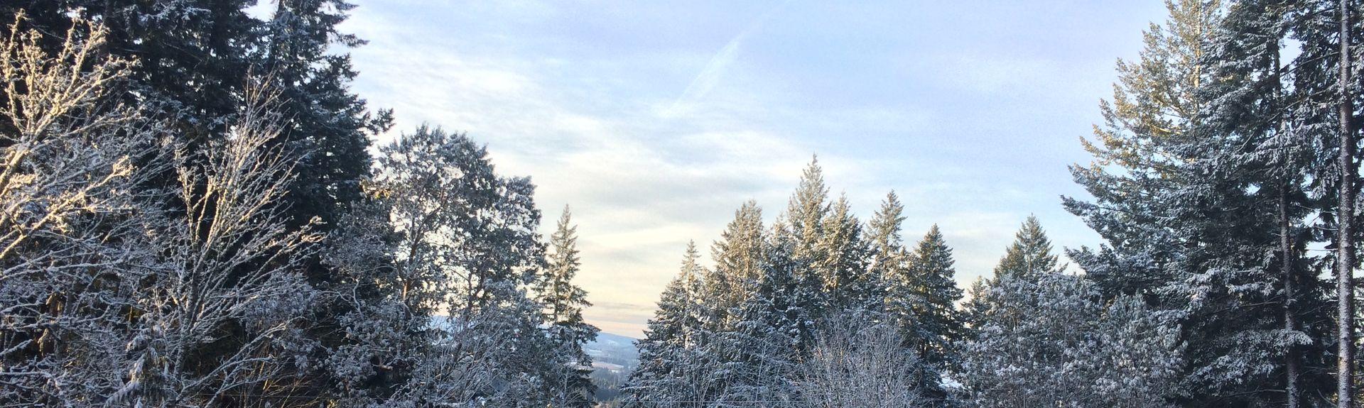 Domaine Drouhin Oregon, Newberg, OR, USA
