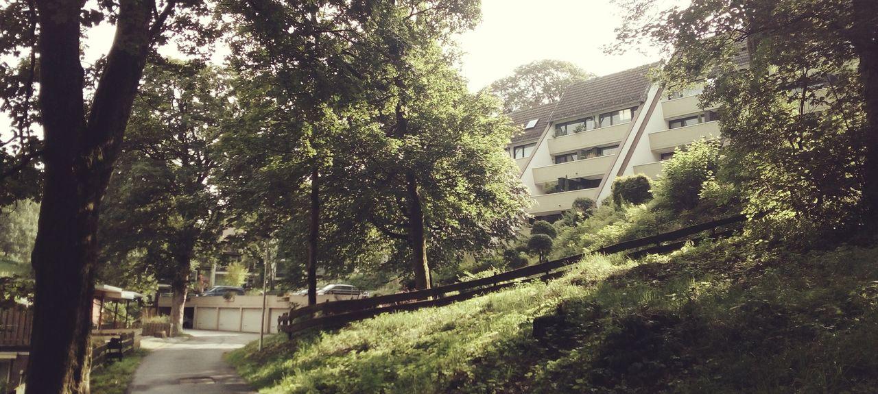 Wurmbergschanze, Braunlage, Niedersachsen, Deutschland