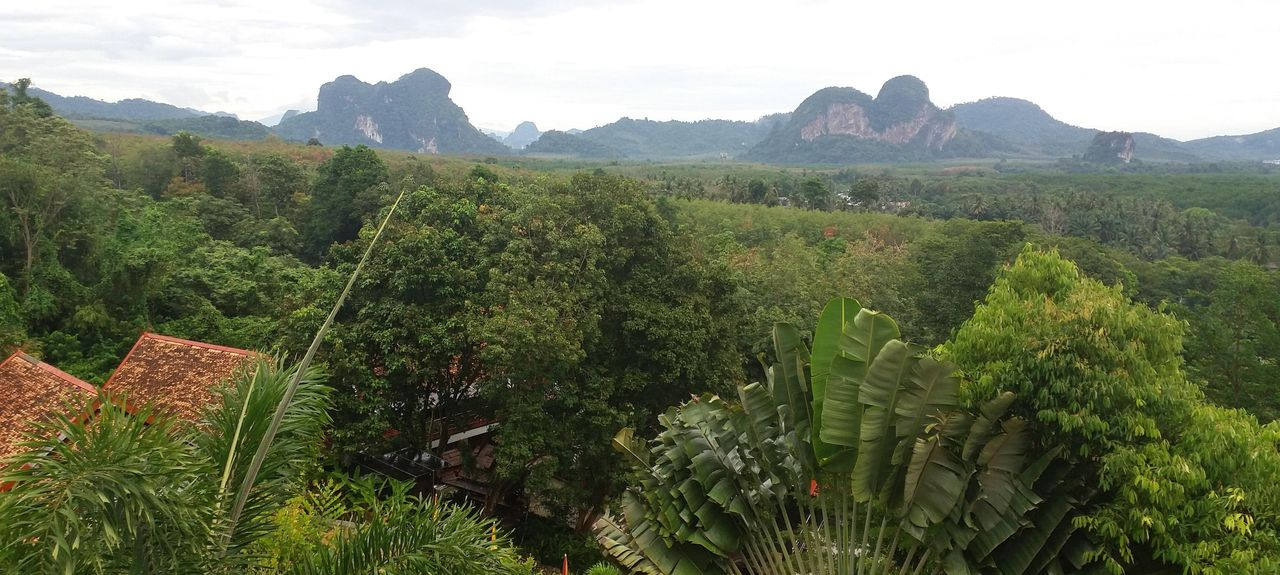 Pak Nam, Mueang Krabi District, Krabi, Thailand