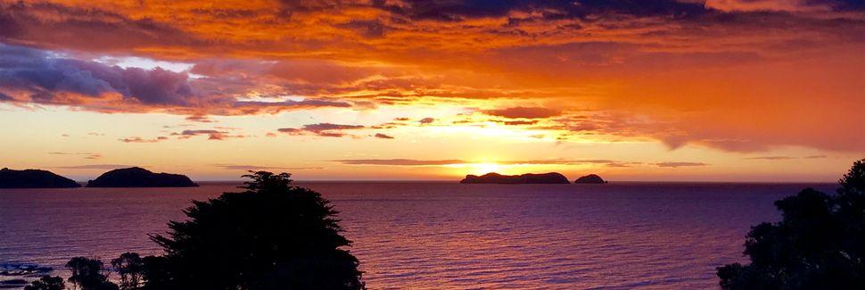Port Charles, Thames-Coromandel, Waikato, New Zealand