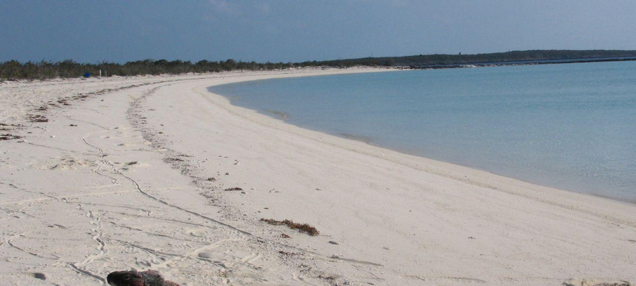 Black Point, The Bahamas