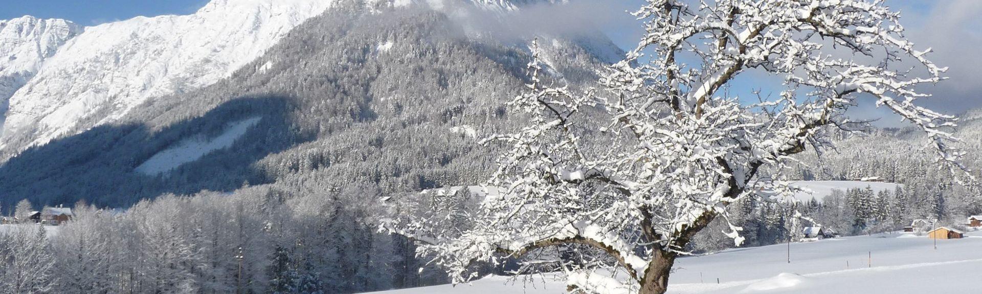 Liezen District, Styria, Austria