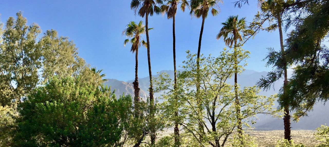 Chino Canyon, Palm Springs, CA, USA