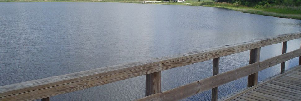 Calabay Parc at Tower Lake (Haines City, Florida, USA)