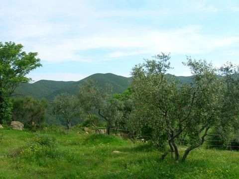 Bibbona, Toscane, Italie