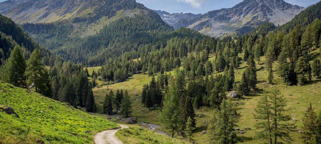 Nendaz, Wallis, Schweiz
