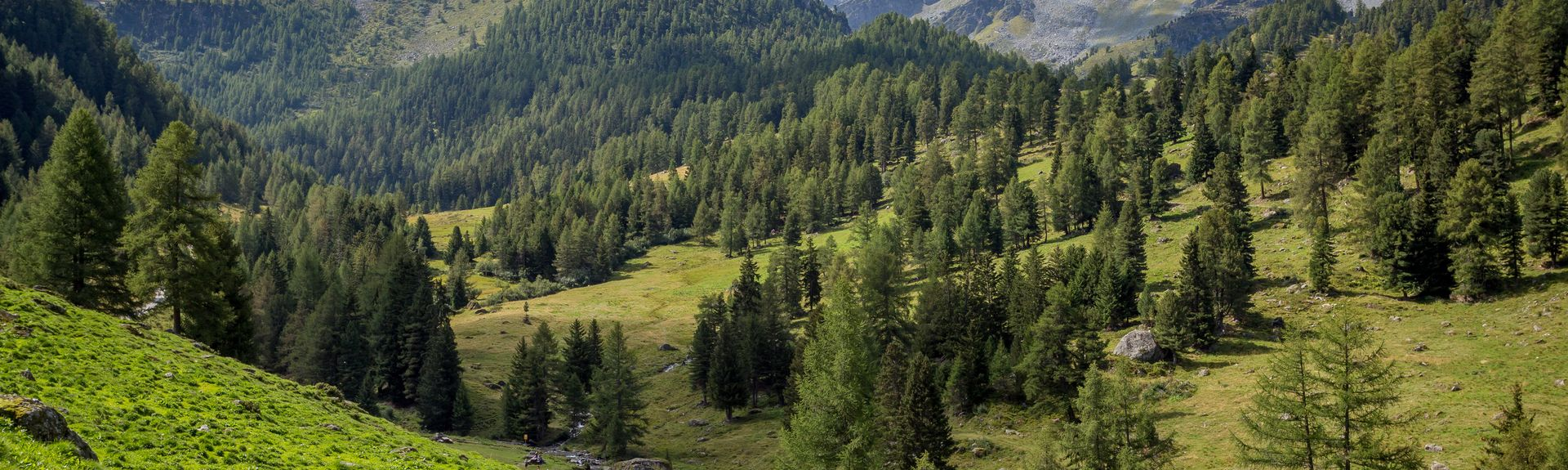Haute-Nendaz, Nendaz, Wallis, Zwitserland