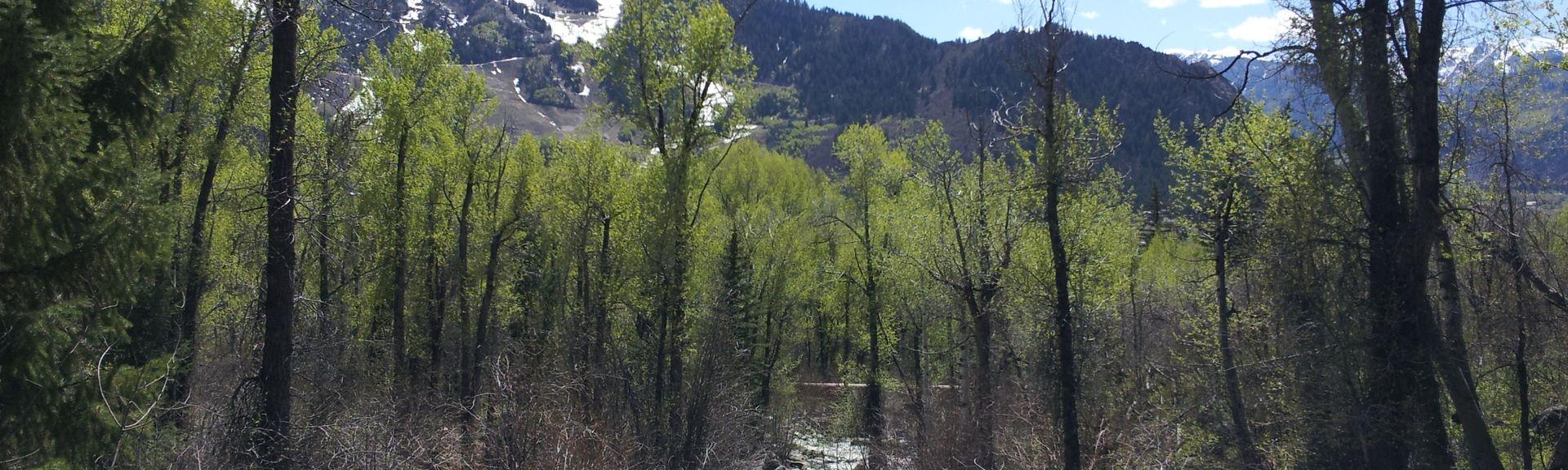 Aspen Mountain, Aspen, CO, USA