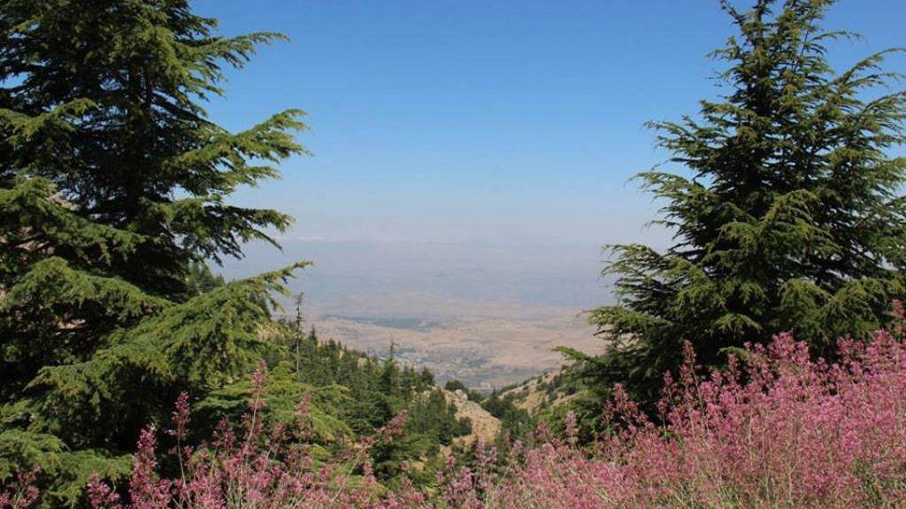 Mount Lebanon, Lebanon