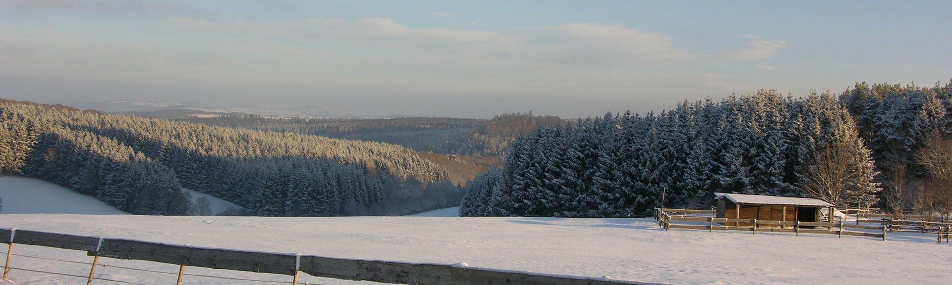 Hillesheim, Vulkaneifel, Renânia-Palatinado, Alemanha