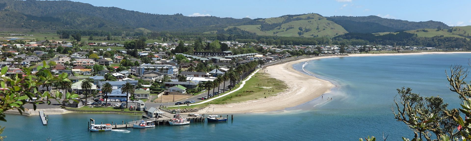 Coromandel Peninsula, Waikato, New Zealand
