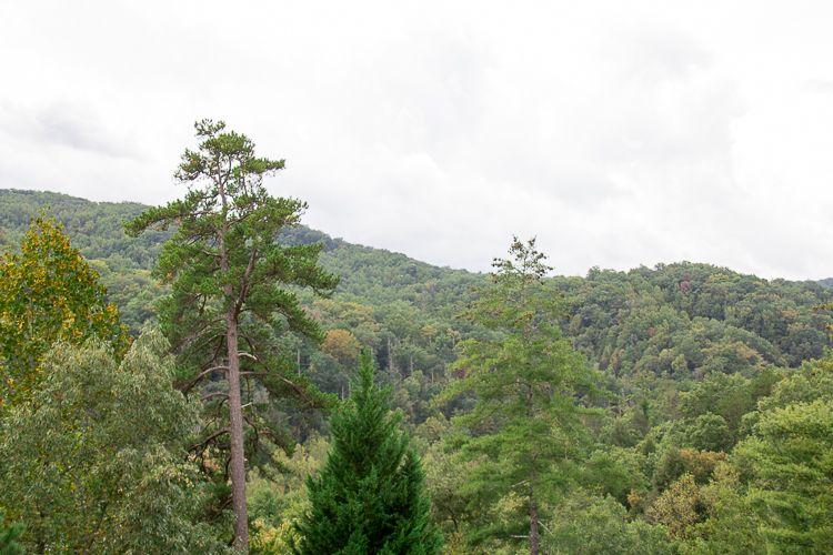 Smokey Mountain Gold & Ruby Mine, Cherokee, North Carolina, United States