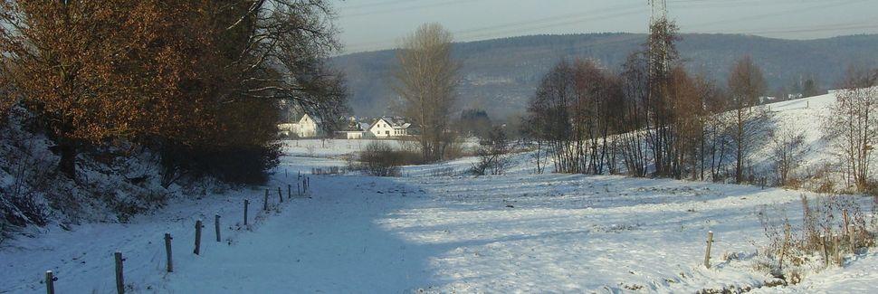 Rodenbach bei Puderbach, RheinlandPfalz, Tyskland