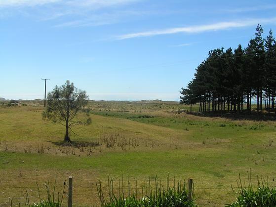 Central Hawke's Bay District, Hawke's Bay, North Island, New Zealand