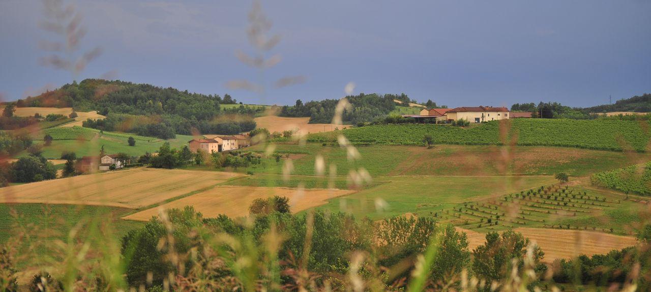 Conzano, Piemonte, Italia