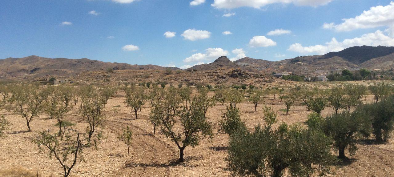 Oria, Almería, Spain