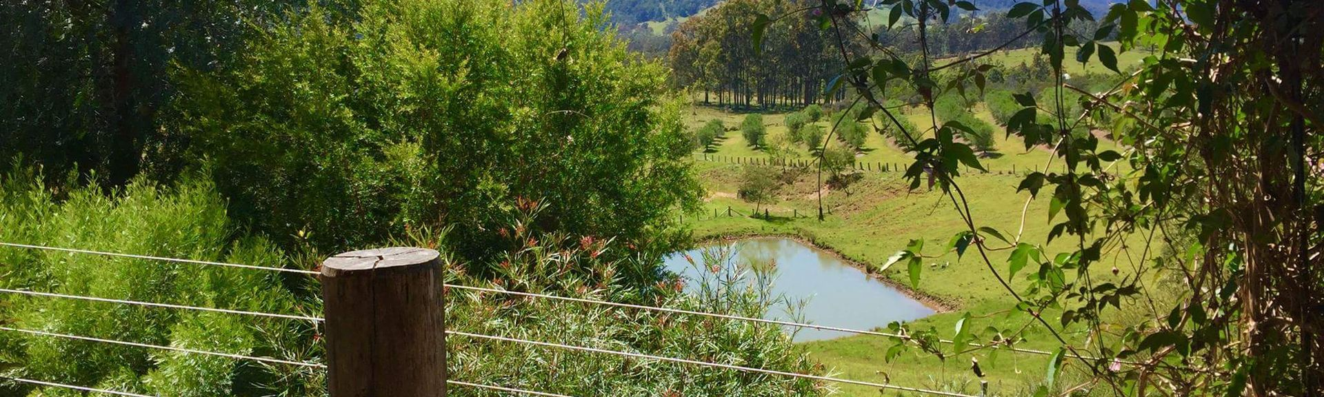 Wollombi, New South Wales, Australia