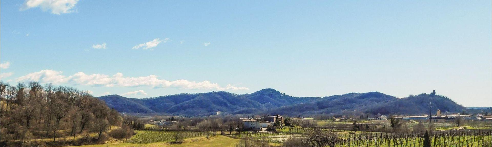 Codognè, Treviso, Italy
